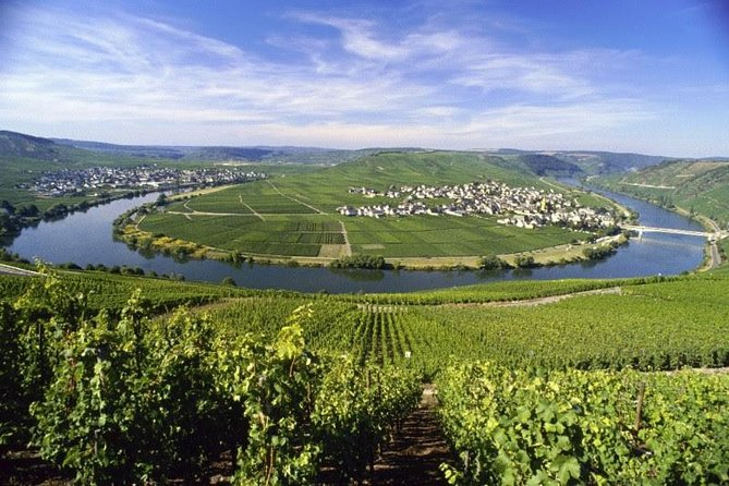 Grape Escape Mosel - Personal wine tour