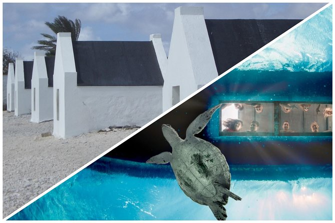 4 hour Private Land & Sea adventure Bonaire