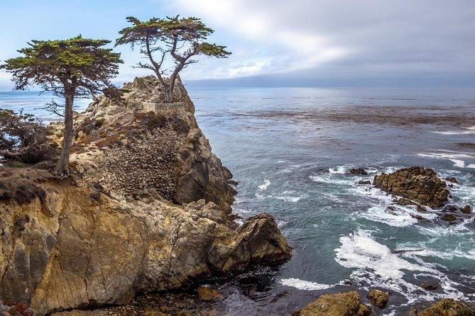 California Coast Tour - Los Angeles to Big Sur, Monterey to San Jose / Bay Area