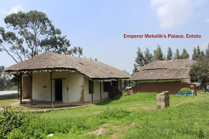 Entoto Mountain Guided Day Tour from Addis Ababa