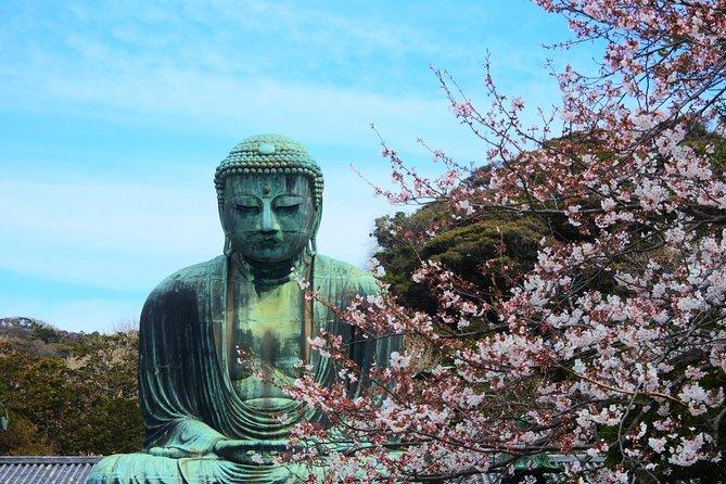Kamakura & Enoshima - One Day Bus Tour