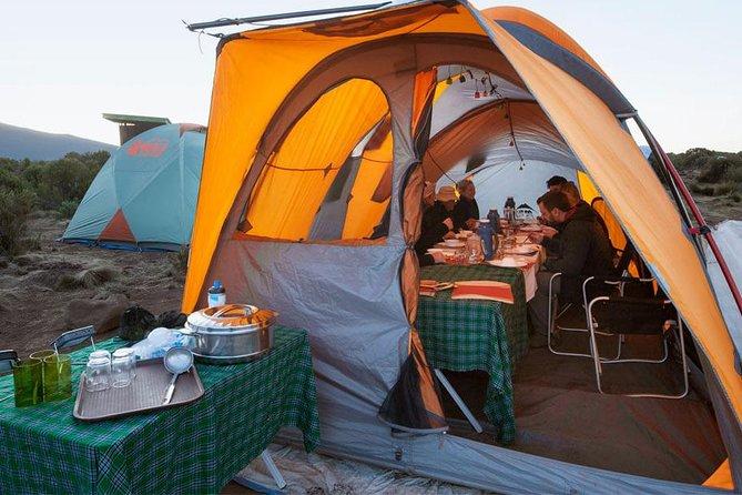 (Lemosho Route) Mount Kilimanjaro Hiking & Camping