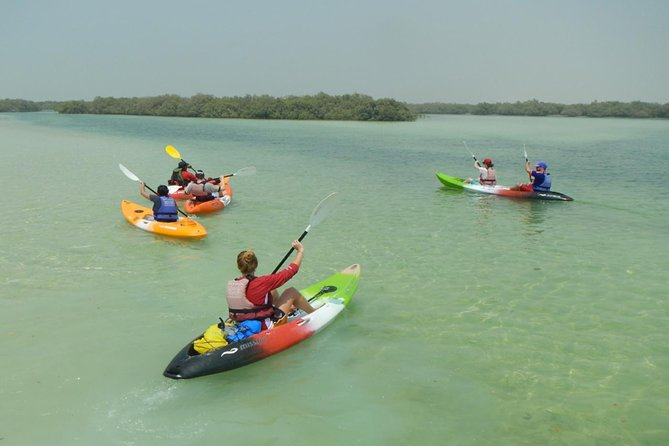 Caiaque de mangue com transporte