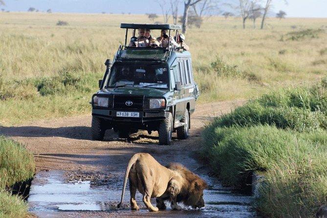 Akagera National Park Game Drive