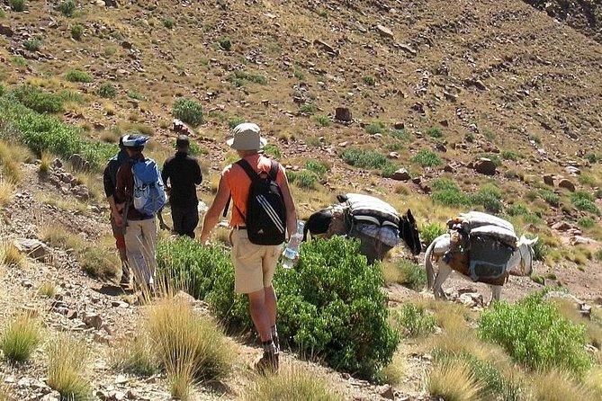 Half day trekking Between Atlas mountains and secret paradise in Agadir