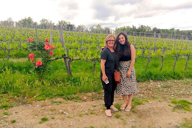 Brunello and Montepulciano Wine Tour from Cortona