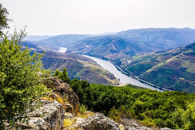 Douro Valley Private Tour with Local Guide - Lunch, Boat Ride, Tastings Included photo 1