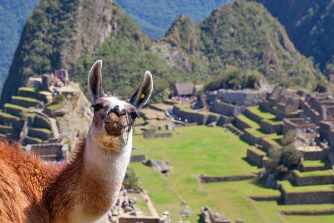 Machu Picchu (Day Trip)