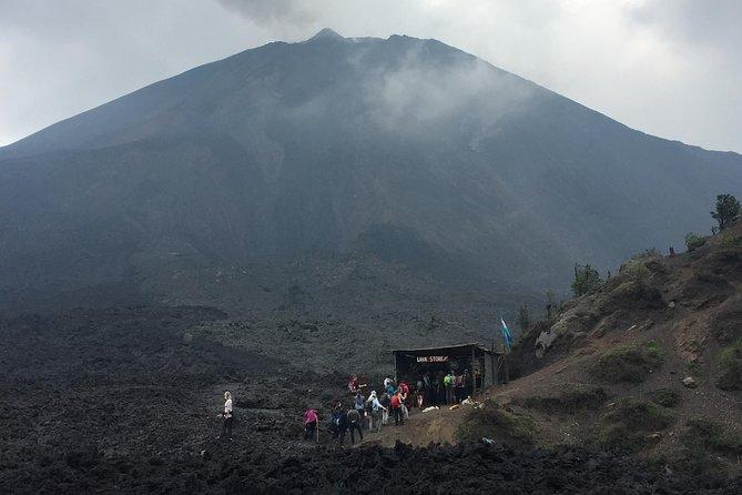 Pacaya Volcano Hike (half-day)