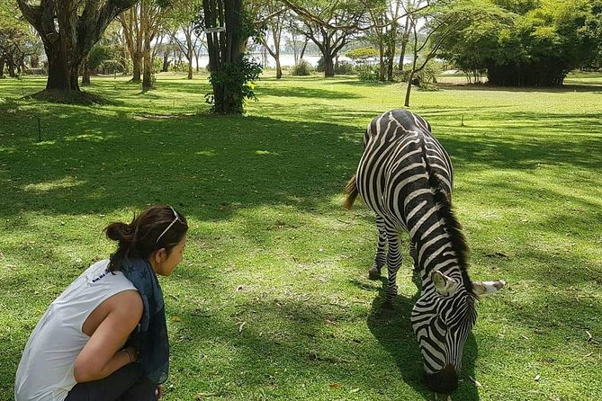 Rhino trail safari - Laikipia Kenya