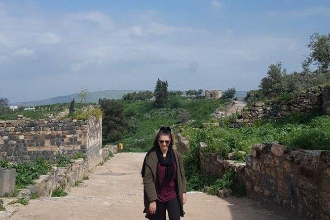 Umm Qais, Jerash & Ajloun Castle Day Tour from Amman