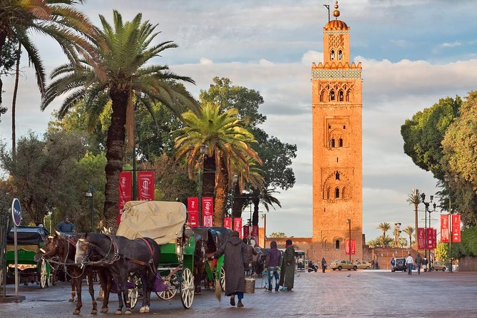 Historical and cultural private tour of Marrakech (half day)