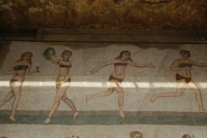 Guided tour of the Roman villa of Casale