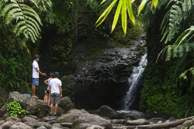 Oahu friendly hiking experience