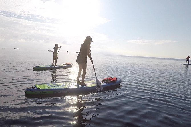 Santorini:Stand-Up Paddle and Snorkel Adventure photo 12