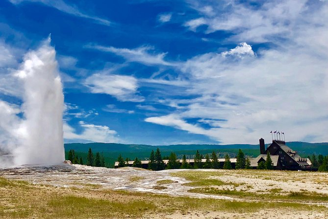 PRIVATE TOUR: The Best of Yellowstone National Park. Picnic lunch included! photo 21