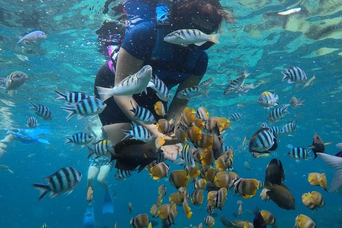 The Best East Tour-Snorkeling At Padang Bay-Lempuyang Temple The Gate Of Heaven