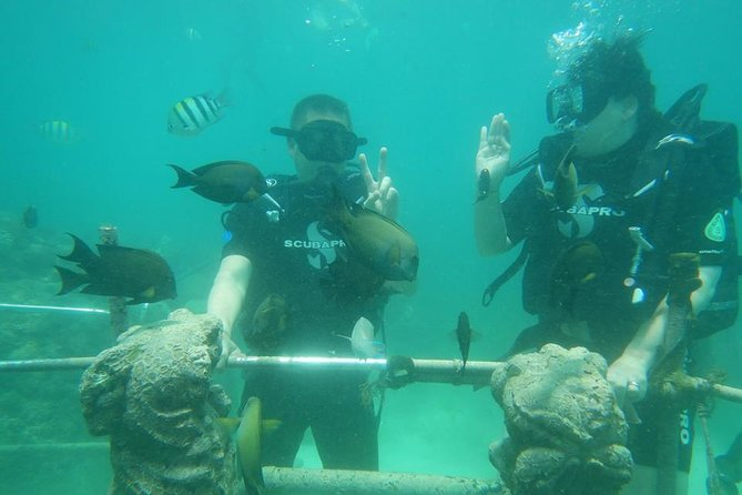 Fun scuba dive for beginners at Tanjung benoa beach
