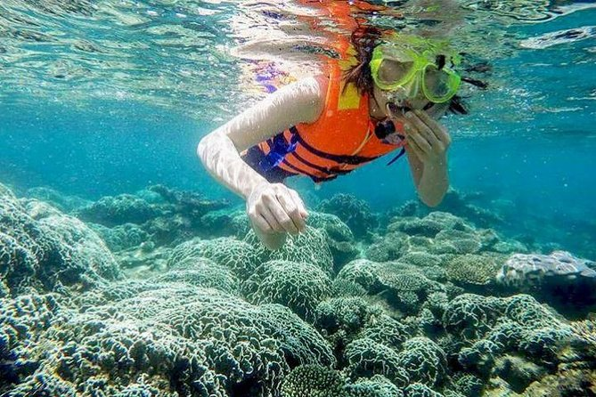 From Mui Ne To Vinh Hy Bay Snorkeling And Fishing Tour | Day Trip