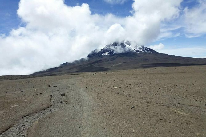 Kilimanjaro 8 Days Trek VIA Lemosho Route photo 1