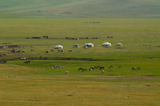 8 Days Tour: Gobi Desert And Kharkhorin