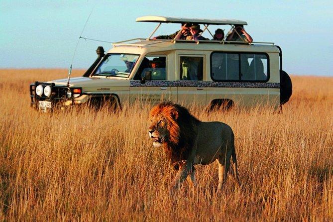 6 Days Magical Serengeti Great Wildebeest Migration Safari