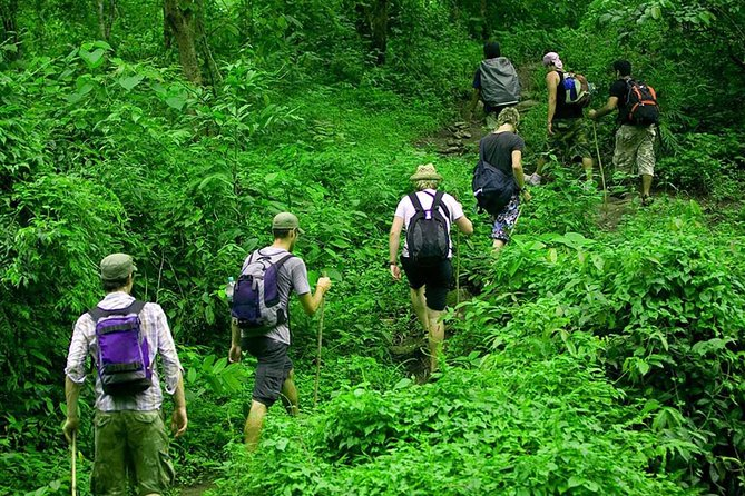 Rain Forest Trekking at Kitulgala Forest Reserve Sri Lanka photo 4