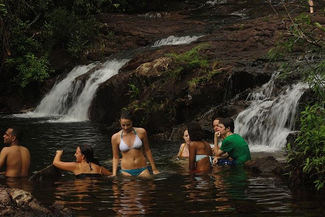 Rain Forest Trekking at Kitulgala Forest Reserve Sri Lanka photo 11