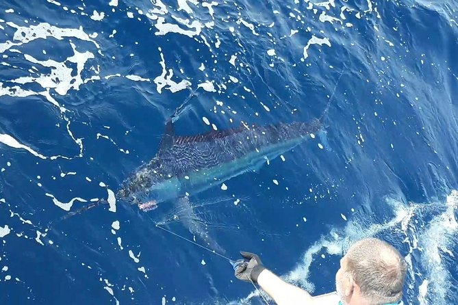 Marlin and Game Fishing in Durban