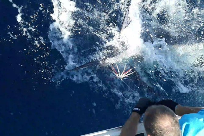Durban - Private Trip - Marlin and Game Fishing on a 34ft Sport Fisher