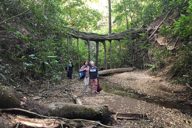 Monteverde Cloud Forest Authentic