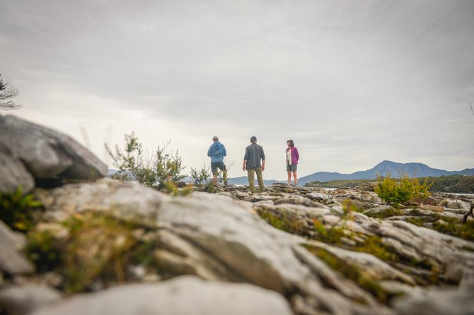 Southwest Tasmania Wilderness Experience: Fly Cruise and Walk Including Lunch