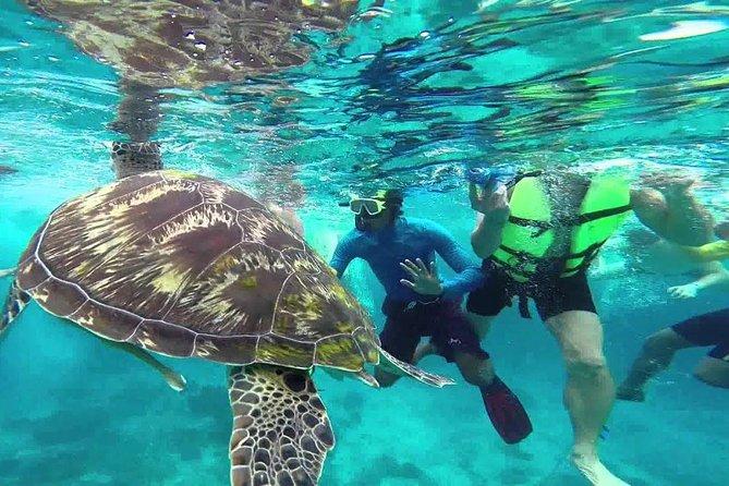 Similan Islands Full-Day Trip from Phuket