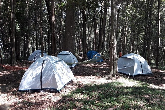 Adventure Day Out In Wayanad - Multiple Activities Included
