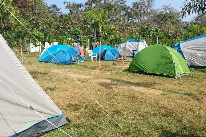 Jungle Camping and Bonfire in Dandeli - Witness the Wildlife photo 2