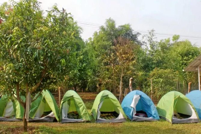 Jungle Camping and Bonfire in Dandeli - Witness the Wildlife photo 3