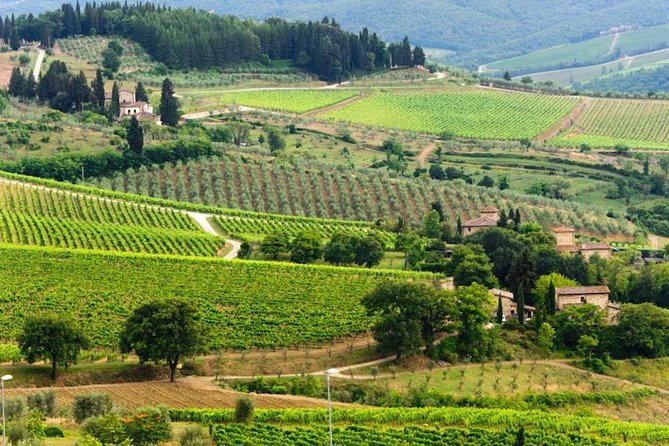 Explore Tuscany's Wonders in Three Nights and Four Days
