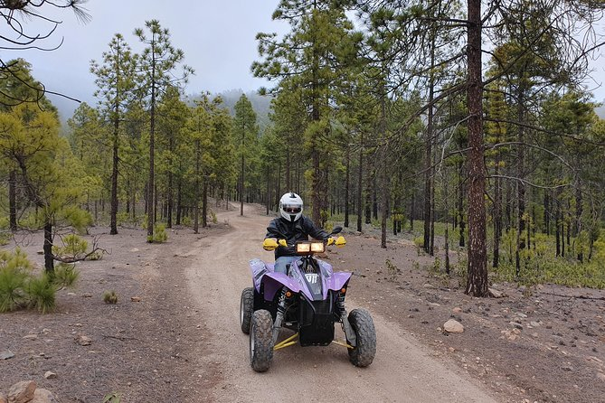 4h Forest Quad Tour on Polaris 500cc Quad