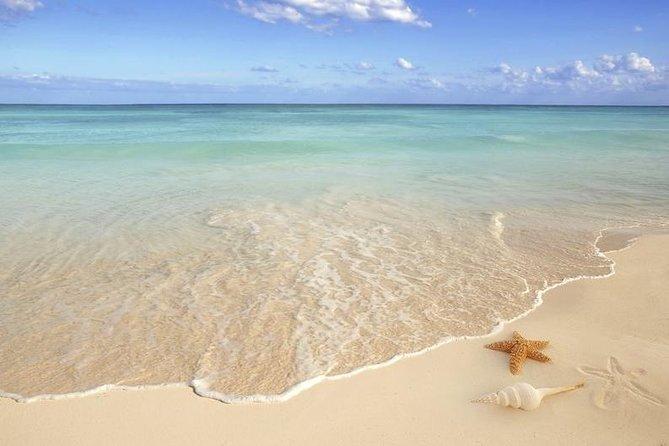 Feel the healing powers of the sparkling white quartz sand at Siesta Key beach.