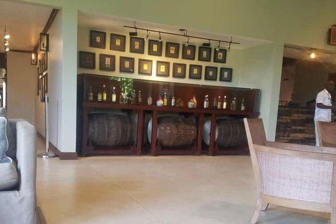 YS Falls and Appleton Estate Private Rum Tour