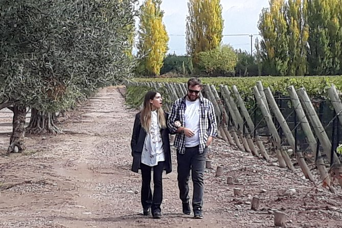 Tour de vinos de lujo de dia completo con almuerzo gourmet., Mendoza, ARGENTINA