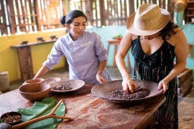 Comalcalco and Cacao Farm from Villahermosa