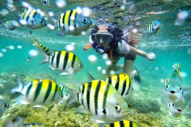 Yogyakarta Nglambor Beach Snorkeling Tour with Private Transport