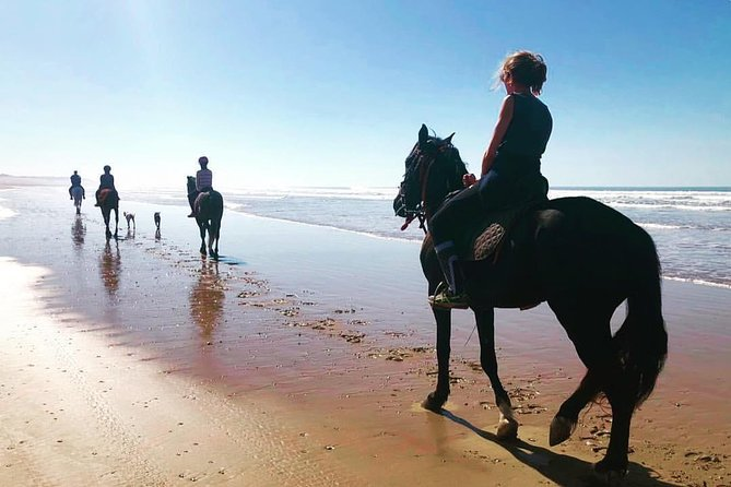 Horse riding at Essaouira beach 2h photo 1