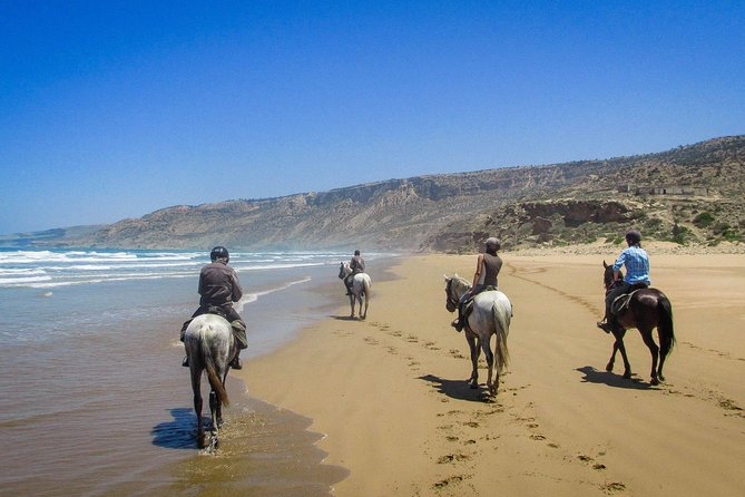 Horse riding at Essaouira beach 2h photo 4