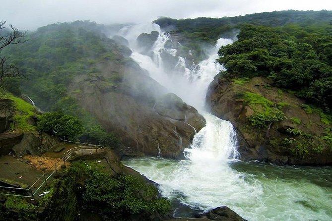 Day Trip to Mollem National Park Including Dudhsagar Falls and Jeep Safari from Goa photo 8