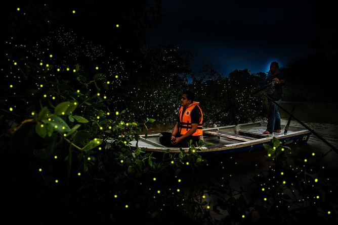 The Perfect Place for Magic:Kuala Selangor Fireflies Tour (Private)