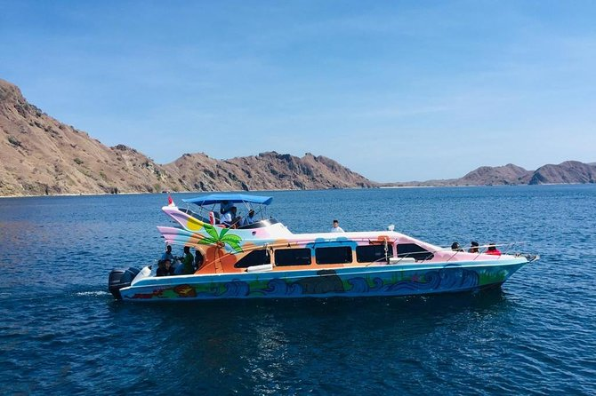 Daily Trip Highlight Komodo Archipelago by Speed Boat