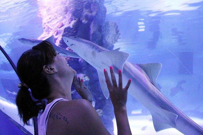 Antalya Tunnel Aquarium - Departure from Side