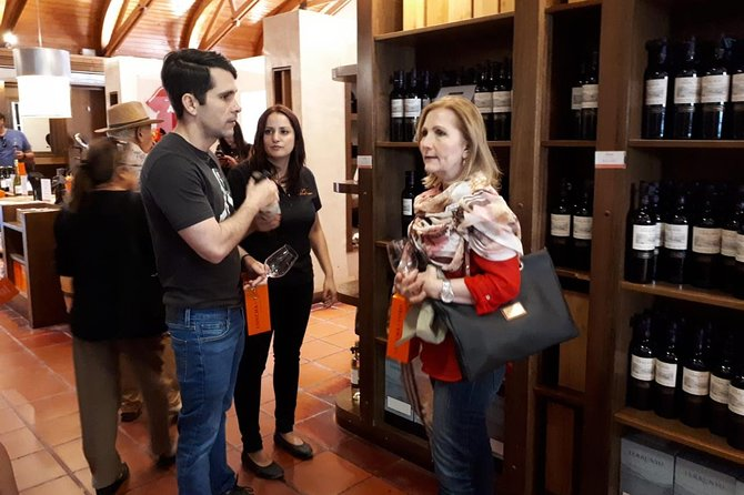 Half-Day Private Tour: Concha y Toro Vineyard from Santiago Winetasting Included